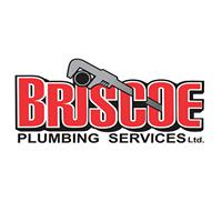 Briscoe Plumbing Services Ltd logo
