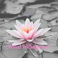 Total Indulgence logo