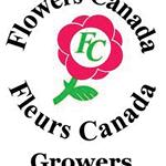 Obdam's Flowers logo