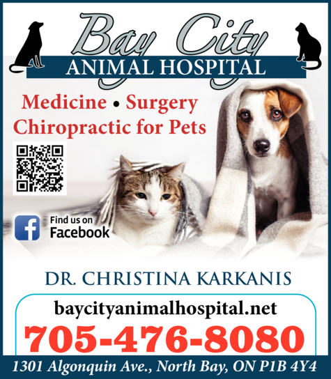 Yellow Pages Ad of Bay City Animal Hospital